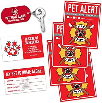 Amazon.com: Mascota alerta Fire Rescue – (6) Ventana de 5