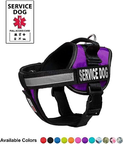 Purple service dog vest amazon sniping forex trading
