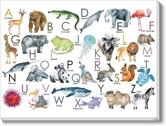 Texture of Dreams Kids Alphabet Letter