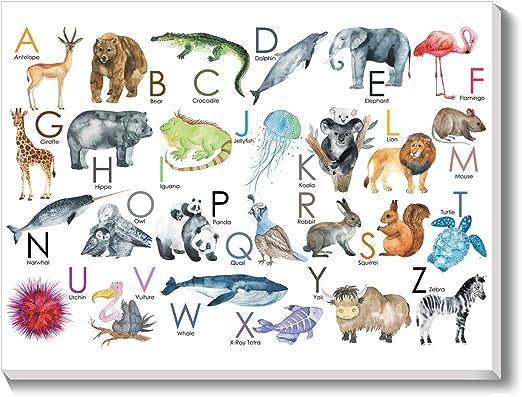 Zoo alphabet with cartoon animals kids Premium Poster print choose your sizes