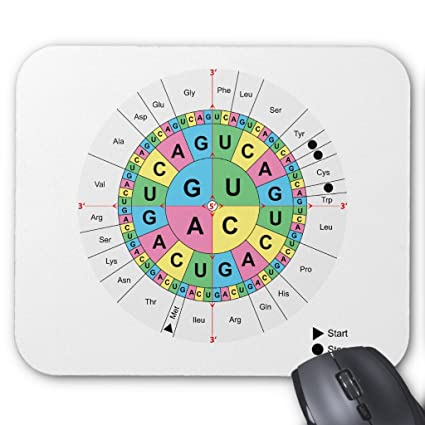 Amazon Zazzle Amino Acid Base Sequence Table Diagram Mouse Pad