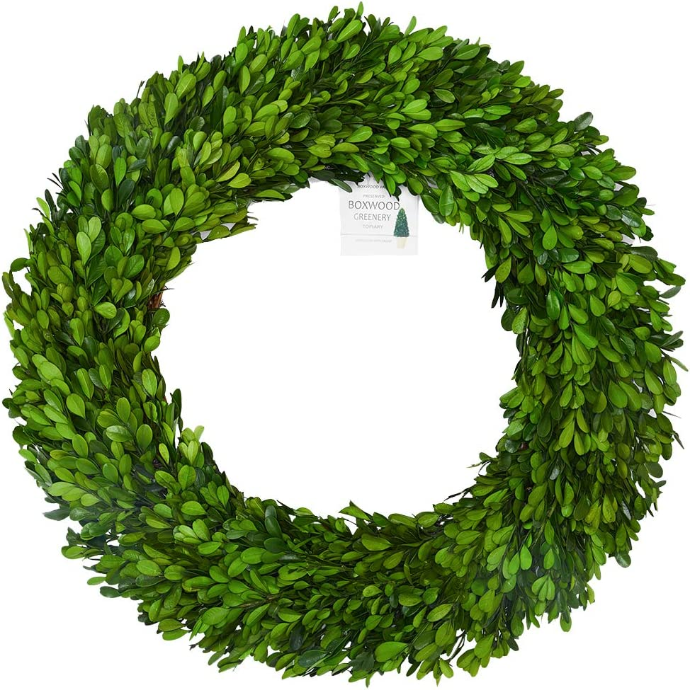 BoxwoodValley 24 inch XX-Large Preserved Boxwood Wreath, Wedding Home Decoration, Farmhouse Style Realistic Full Green Real Boxwood Wreath, Indoor Décor for Halloween, Christmas Wreath (Wreath, 24