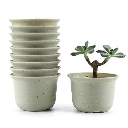 Amazoncom T4u 35 Inch Plastic Round Succulent Plant Potcactus