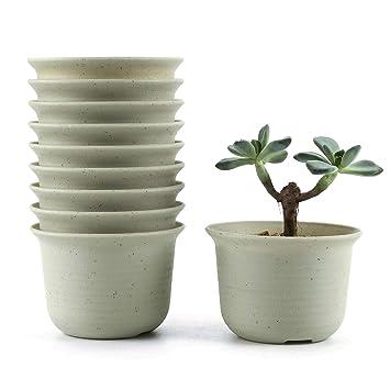 T4u 15cm Plastik Runde Sukkulenten Topfe Kaktus Pflanze Topfe Mini Blumentopfe Weiss 8er Set
