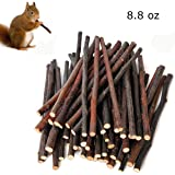 Simona Micah 250g Organic Apple Sticks Wood Tree Branches Pet Snacks Chew Toys Branch Guinea Pigs