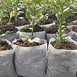 Moresave 100 Stück Pflanzbeutel Pflanzsack aus Vliesstoff Gartenzubehör, 20 * 22cm