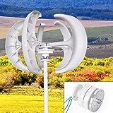 BTdahong 400W 12V Windkraftanlage Generator Vertikal mit Controller 5 Bl/ätter Rot Lantern Wind Turbine f/ür Garten L/ärmarm