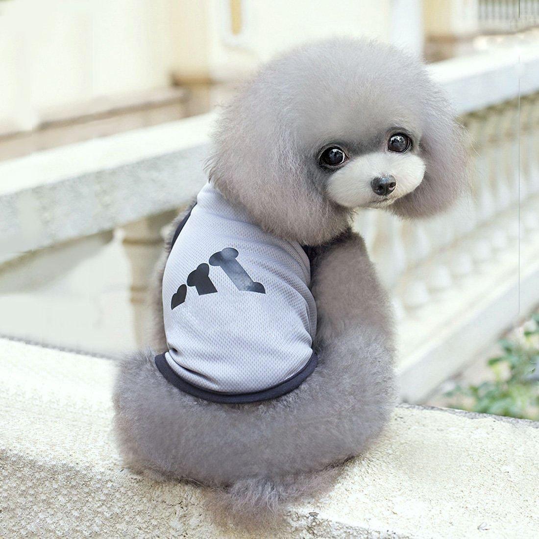 Amazon.com : eDealMax Camisa perro pequeño transpirable ...