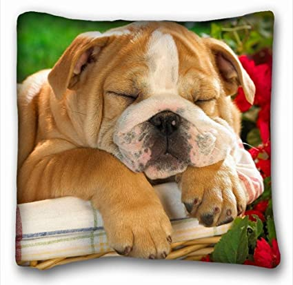 tslook mantas gracioso Bulldog Inglés Cachorro Perro Cozy manta de peluche, poliéster, Blanco,