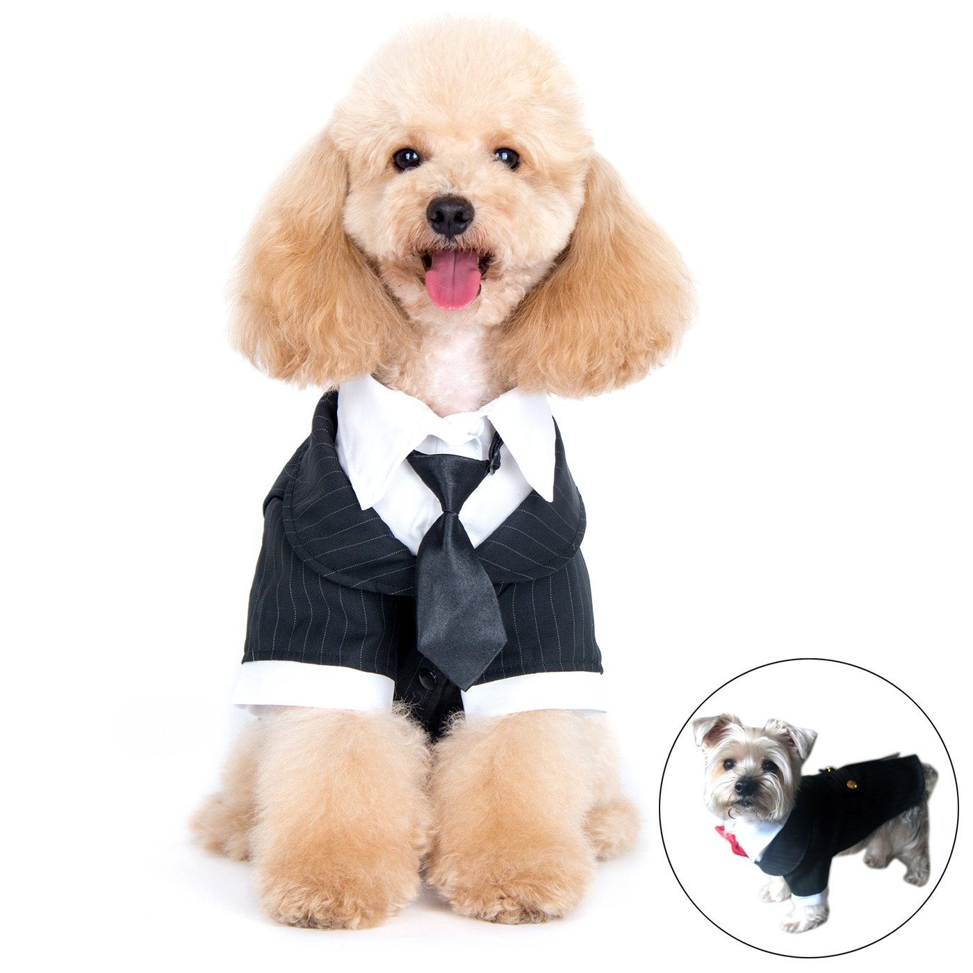Alfie Pet by Petoga Couture - Oscar Formal Tuxedo with Black Tie and Red Bow Tie Size: XL