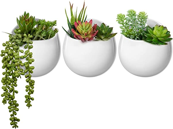 Mkono Wall Planter With Artificial Plants Decorative Potted Fake Succulents Picks Assorted Faux Succulent In Modern Ceramic Hanging Plant Pot Vase For Home Decor Set Of 3 Amazon Ca Home Kitchen
