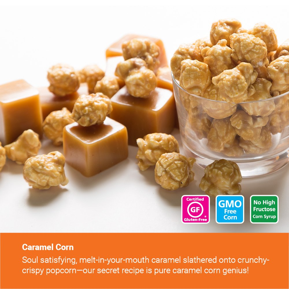 Popcornopolis Gourmet Popcorn 2 Gallon Tin - Classic by Popcornopolis (Image #4)