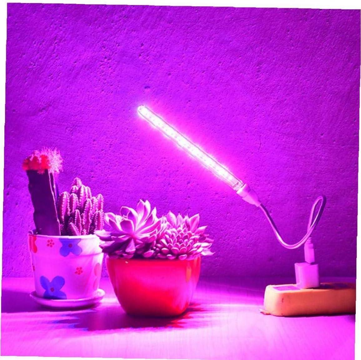 Planta Barra de luz Led Grow l/ámpara 10wled Fuente de alimentaci/ón USB Invernadero port/átil de Navidad para Las Plantas de Interior 2pcs Suministros de jardiner/ía