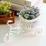 Soledi Plastic White Tricycle Bike Design Flower Basket Storage Container For Flower Plant Home Party Weddding Decoration DIY Random Color Cute