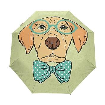 BENNIGIRY Paraguas de viaje resistente al viento para perro inteligente, con cierre automático, plegable