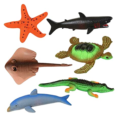 Image of: Turtle Artcreativity Growing Sea Animals Different Water Expanding Sea Creatures Grows 6x Larger Amazing Amazoncom Amazoncom Artcreativity Growing Sea Animals Different Water