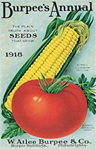 Vintage 1918 Burpee's Annual Tomato Corn on The Cob Metal Tin Sign 8x12 Inch Retro Home Kitchen Outdoor Garden Wall Decor Tin Metal Poster