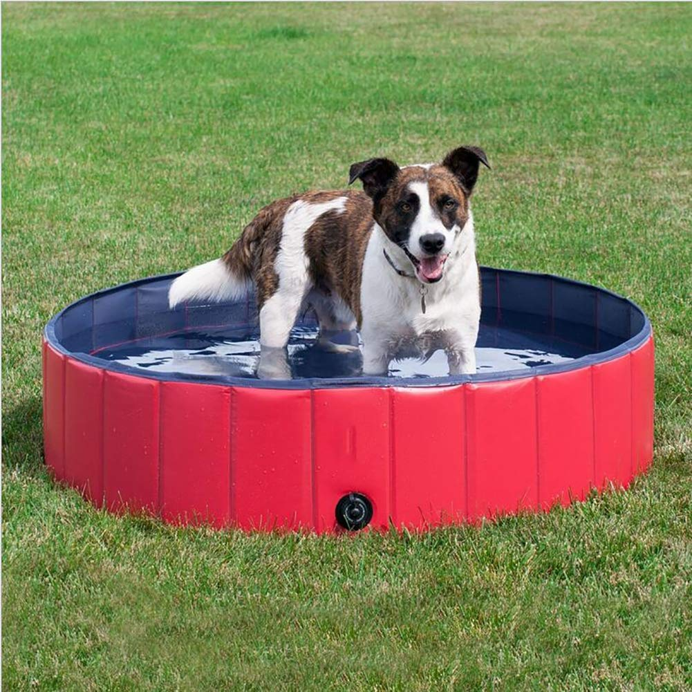 Large JYY Foldable Pet Swimming Pool, Puppy Swimming Bathing Tub In Different Size For Swimming, Playing, Bathing,L