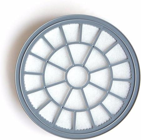 Polti PAEU0280 Filtro Poliéster para aspirador Forzaspira: Amazon ...