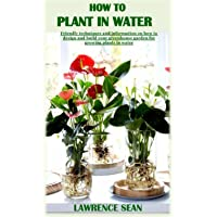 HOW TO PLANT IN WATER: Friendly techniques and information on how to design and build your greenhouse garden for growing…