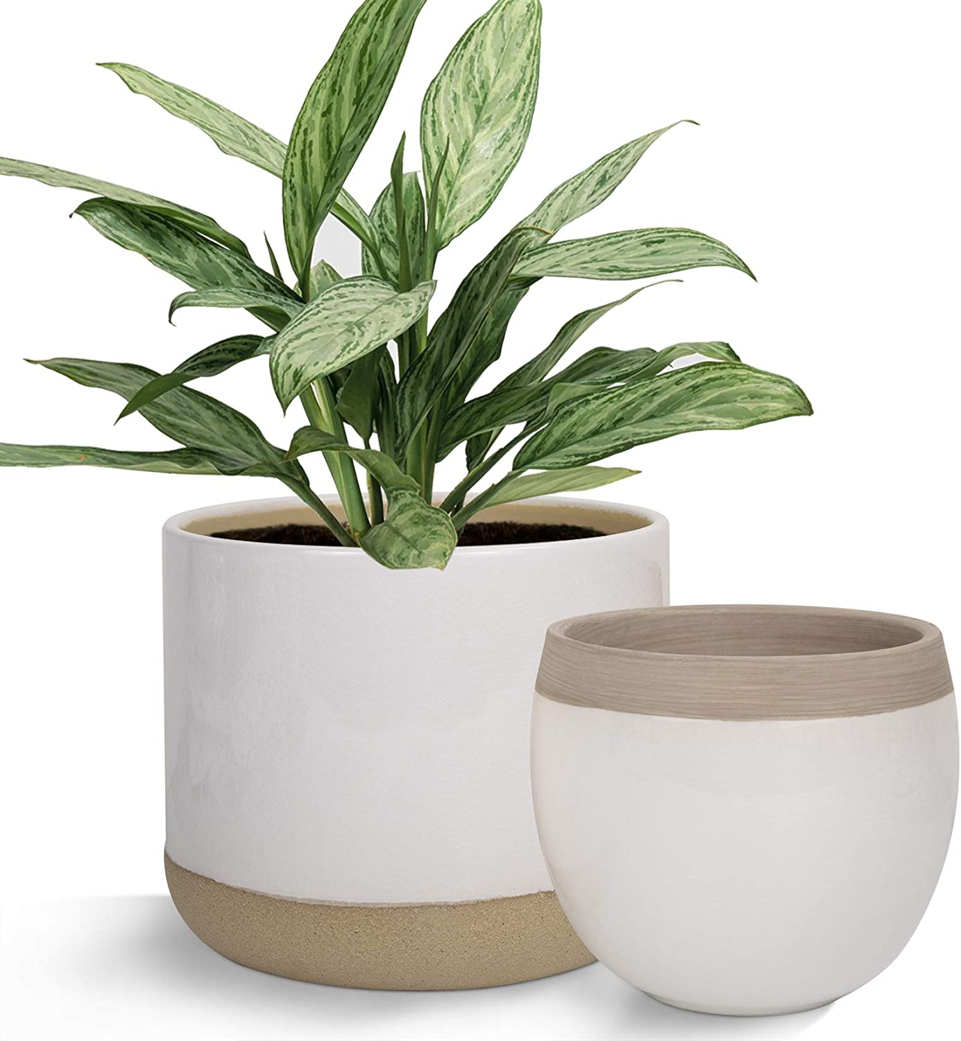 Amazon Com White Ceramic Flower Plant Pots 6 5 4 9 Inch Indoor Planters Plant Containers With Beige And Cracked Detailing Garden Outdoor