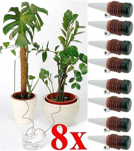 8 x Plantas Sistema de Riego Pipeta dispensador de agua automático humidificador