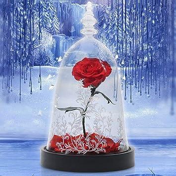 Dome Rose Fleur Rose Pour Toujours Enchantee De Verre Rose Cadeau D