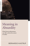 Meaning in Absurdity: What bizarre phenomena can tell us about the nature of reality (English Edition)