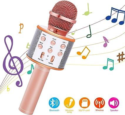 Bearbro Micrófono Inalámbrico Bluetooth,Micrófono Karaoke ...