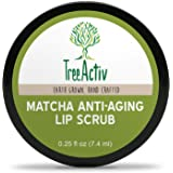 TreeActiv Matcha Anti-Aging Lip Scrub | Natural Exfoliation for Dry, Chapped Lips | Exfoliate, Heal, Hydrate & Protect | Lip Moisturizer for Men & Women | Lip Sugar Scrub | Reduce Wrinkles