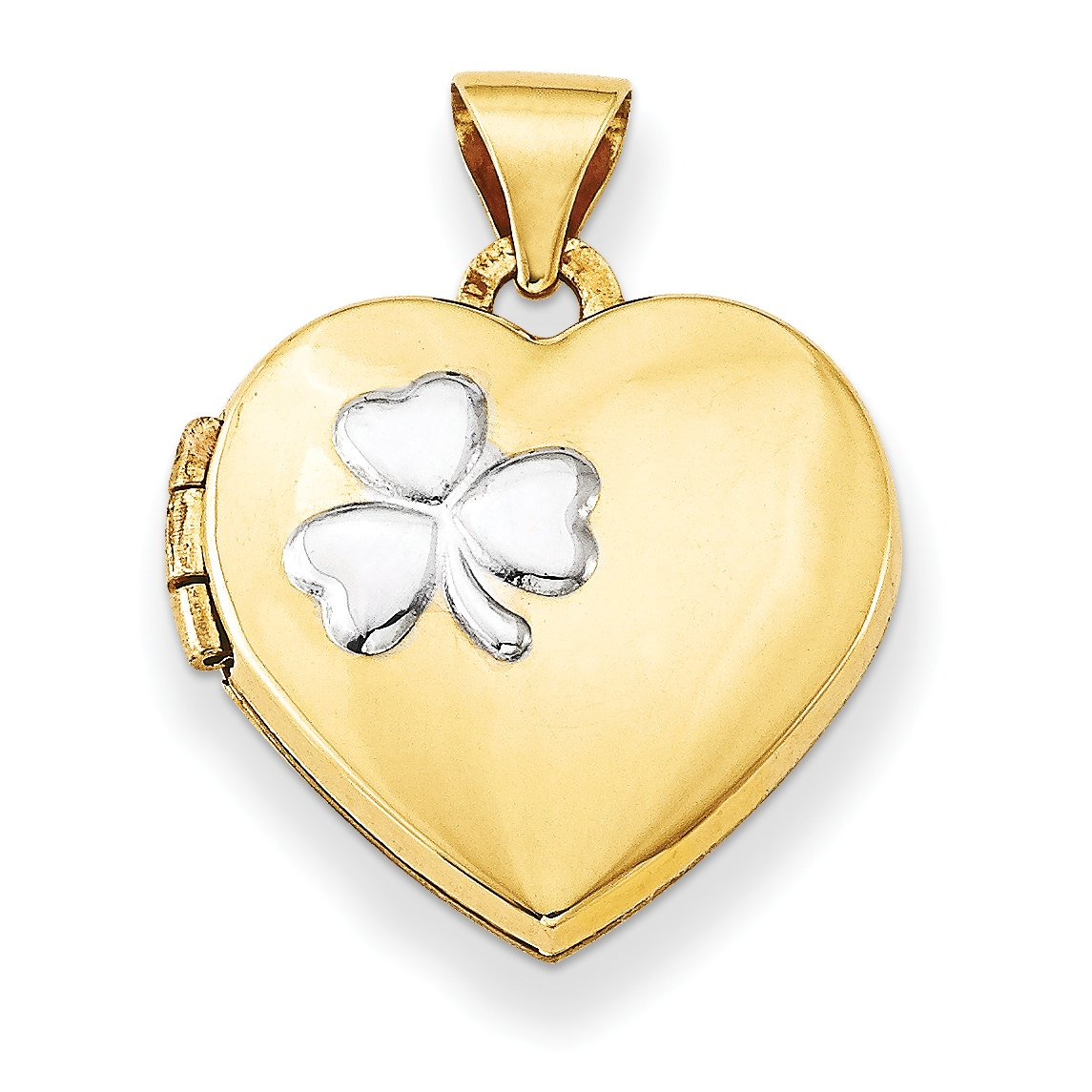 ICE CARATS 14k Yellow Gold 15mm Heart Photo Pendant Charm Locket Chain Necklace That Holds Pictures Fine Jewelry Gift Set For Women Heart