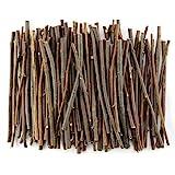 TKOnline 100Pcs 10cm 0.1-0.2 Inch in Diameter Wood Log Sticks for DIY Crafts Photo Props Craft Sticks,Wood Crafts,Sticks inch