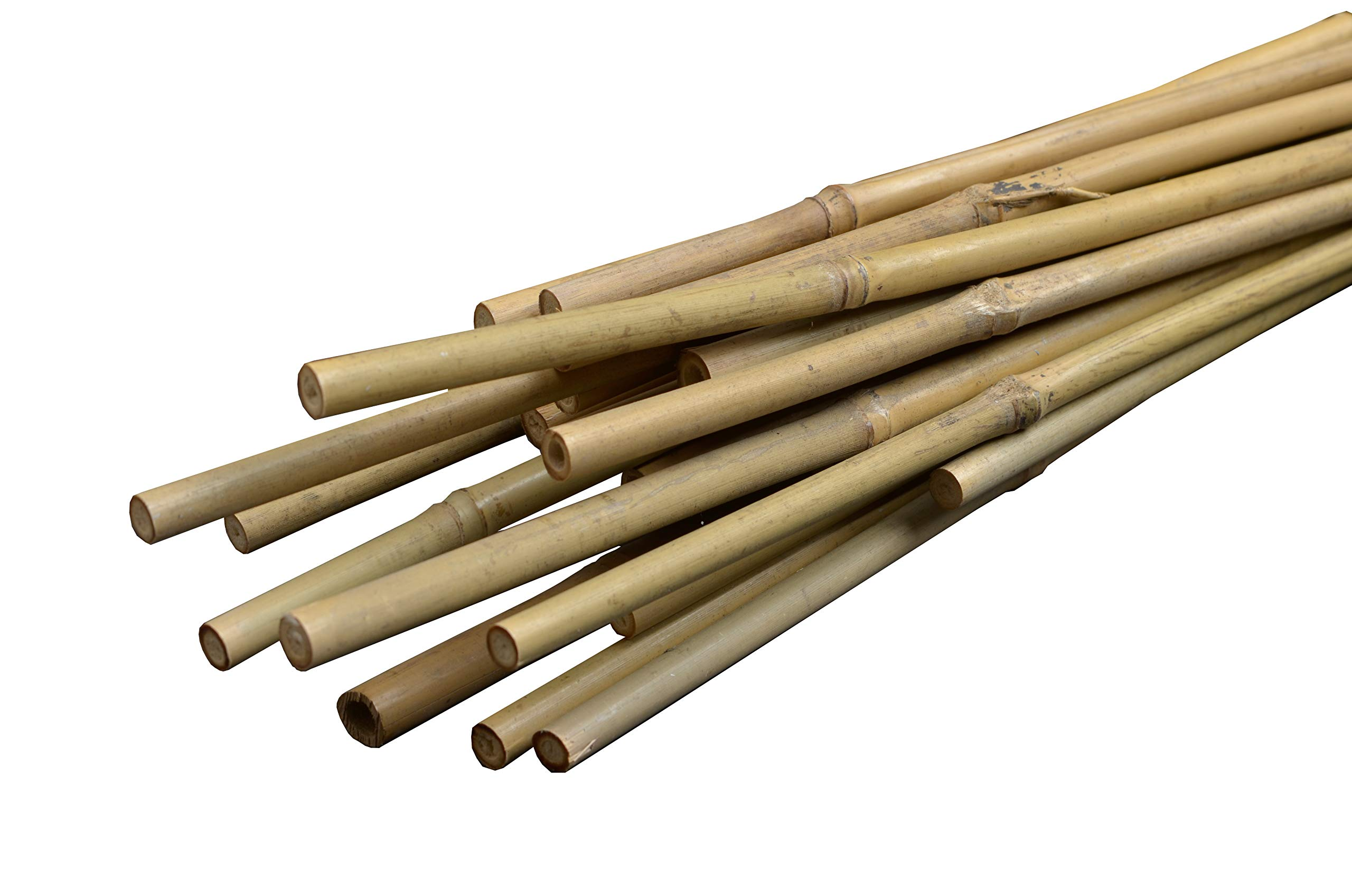 Bond Manufacturing N818 8-ft x 3/4-in Diameter Bamboo Stakes, 100-pack, 3/4'', Natural