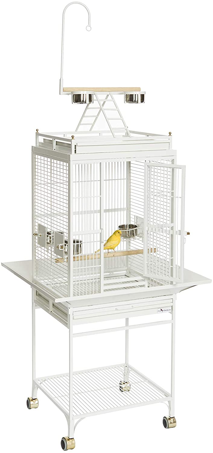 Midwest Homes for Pets Nina Bird Cage