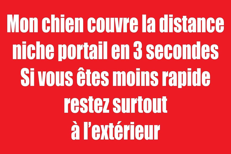 adhesif concept Panneau Attention au Chien avec Texte Humoristique 150x100mm