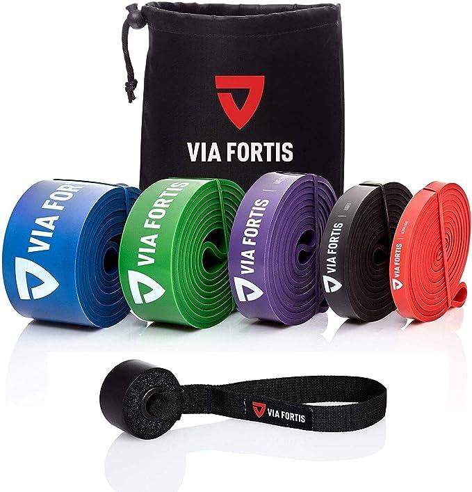 VIA FORTIS Bandas elasticas musculacion Gomas elasticas Fitness para su Entrenamiento en casa - con el Plan de Entrenamiento y la Bolsa - 5 Fuerzas ...