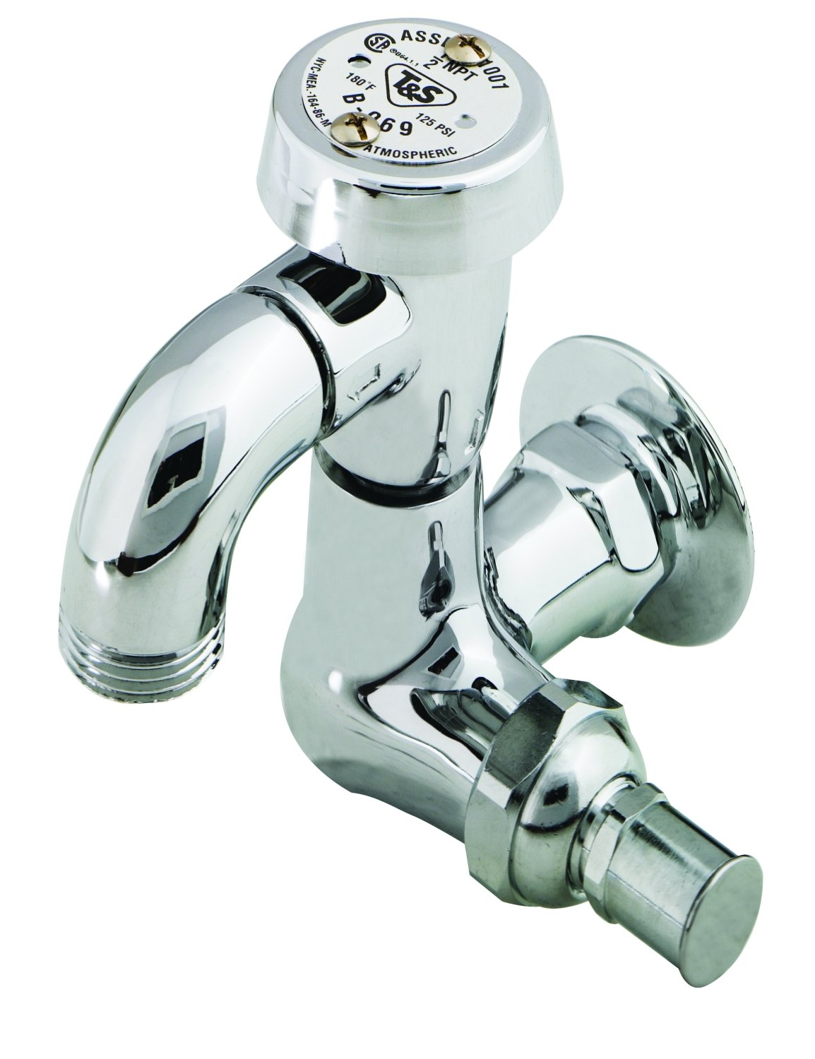 3//4 NPT Female Flanged Inlet Vacuum Breaker Polished 3//4 Hose Threads T/&S Brass B-0737-POL Sill Faucet
