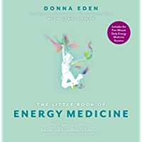 The Little Book of Energy Medicine: The Essential Guide to Balancing Your Body's Energies