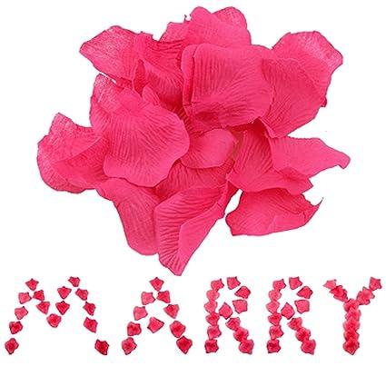 Amazon 1000 fuchsia hot pink silk rose petals wedding flower 1000 fuchsia hot pink silk rose petals wedding flower mightylinksfo