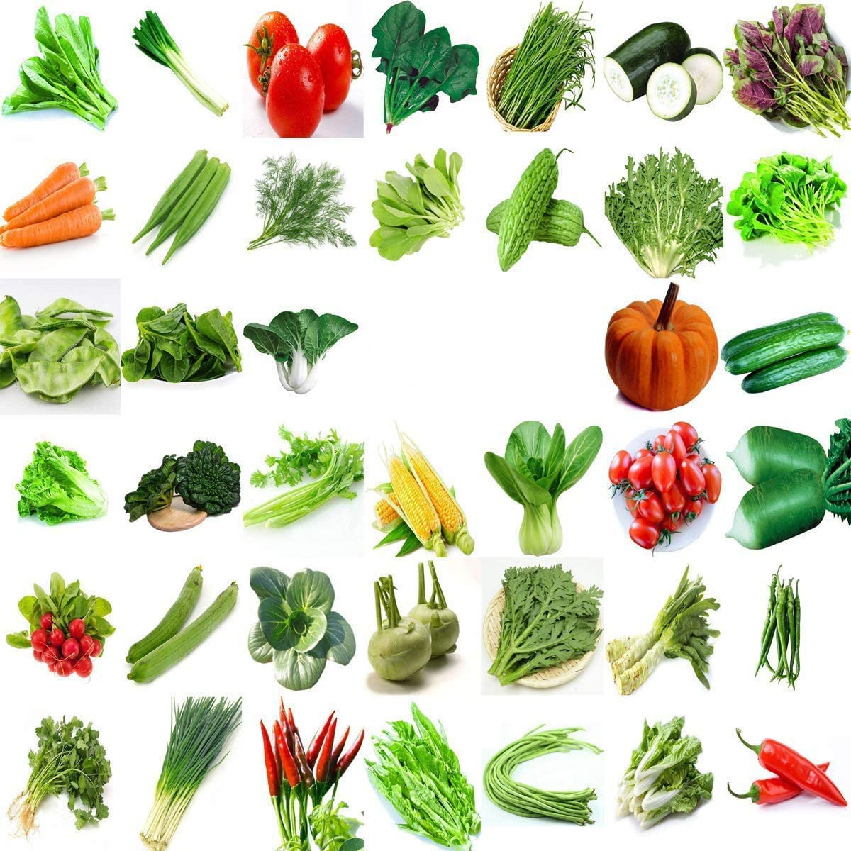 500 Heirloom semences de légumes 10 Variété Jardin Pack d/'urgence survie Non-OGM