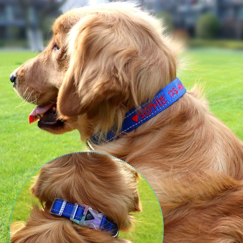 Collar de perro LED personalizado Seguridad de costura reflexiva,Hebilla de separaci/ón de luz intermitente impermeable Collar de perro bordado con nombre y n/úmero de tel/éfono del animal dom/éstico