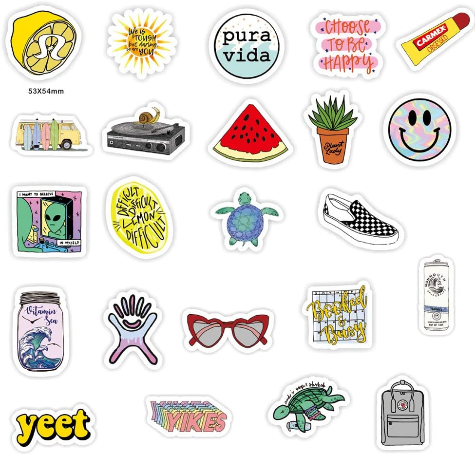 ,Cute Waterproof Vinyl Stickers for Water Bottle,Laptop,Phone Decal 50PCS Funny Meme Stickers for Water Bottle