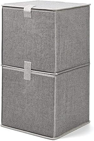 EZOWare Caja de Almacenaje de Tela con 2 niveles, Estante ...