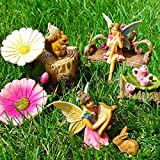 Fairy Garden Miniature Friends Fun Set of 11 pcs, Premium Quality Hand Painted Figurines & Accessories, Kit For Outdoor or House Decor, By Mood Lab