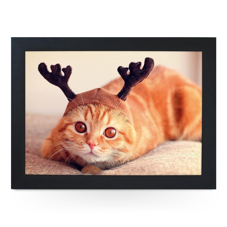Gato Vestido como un reno. Alta calidad puf de Botánica. l0233 ...