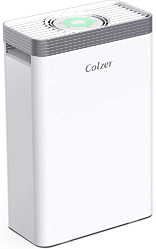 COLZER Air Purifier with True HEPA Air Filter, Air Purifier for Bedroom, for Spaces Up to 550 Sq Ft, Perfect for Home Office with Composite Filter