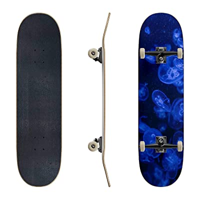 EFTOWEL Skateboards Abstract View of Jellyfish Underwater Jellyfish Stock Pictures Classic Concave Skateboard Cool Stuff Teen Gifts Longboard Extreme Sports for Beginners and Professionals : Sports & Outdoors