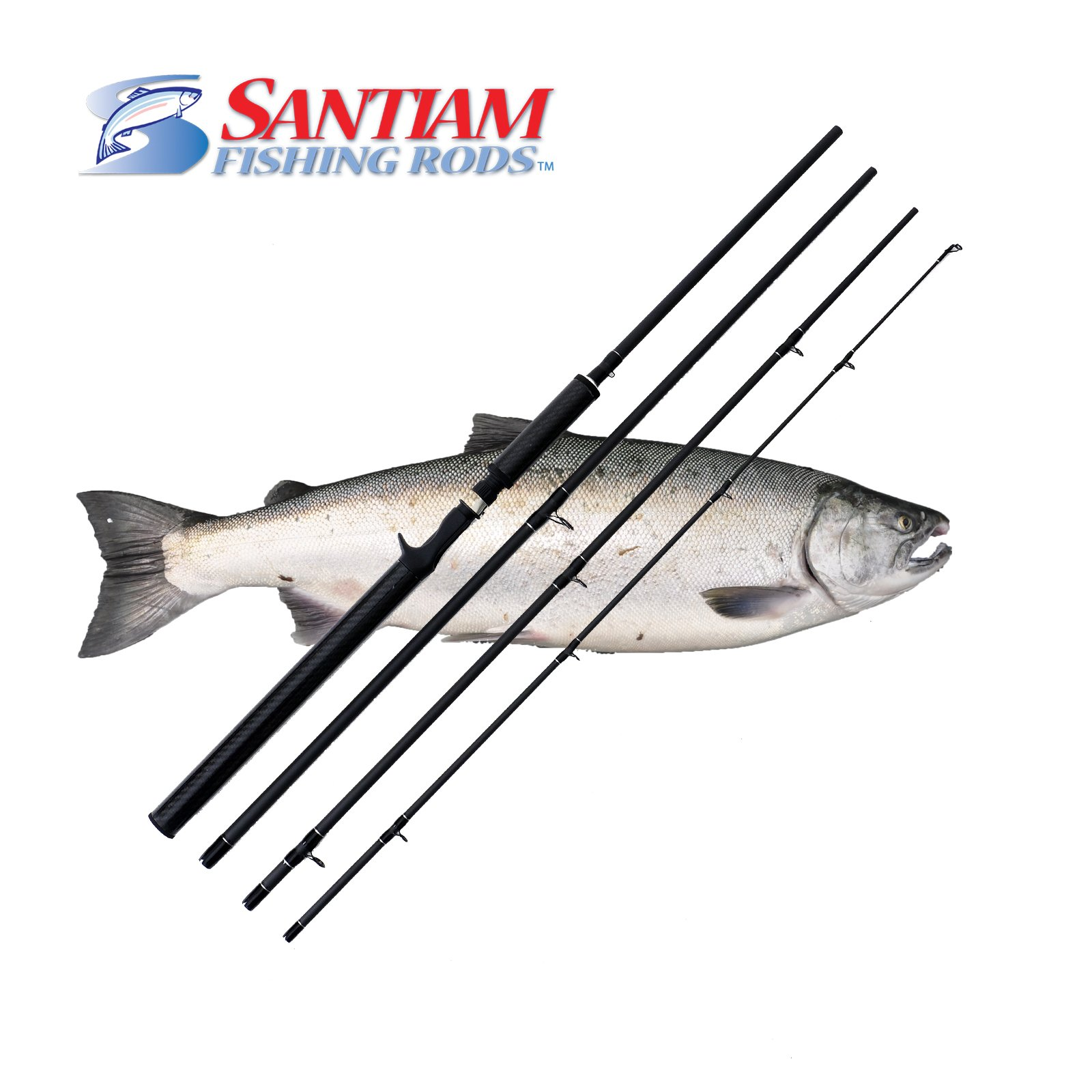 Santiam Fishing Rods 4 Piece 10'6'' 15-40lb Graphite Travel Casting/Trolling Rod w/Carbon Handle