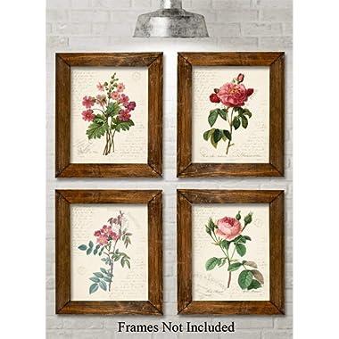 Paris Botanicals - Set of Four Photos (8x10) Unframed - Great for Bedroom/Bathroom Decor Under $20