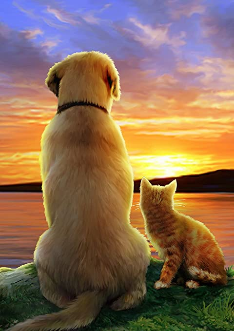 Toland Home Garden Sunset Pals 12 5 X 18 Inch Decorative Cute Cat Dog Garden Flag Garden Outdoor